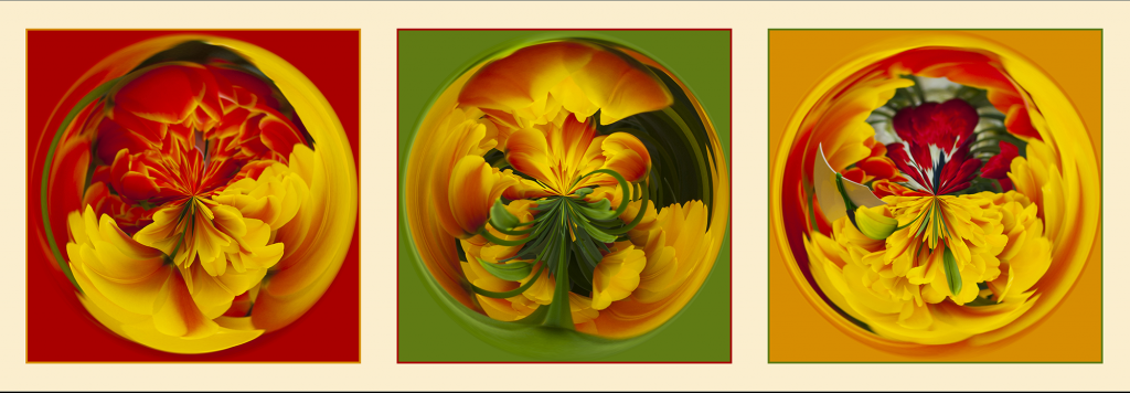 serie-tulpen-cristalball_small